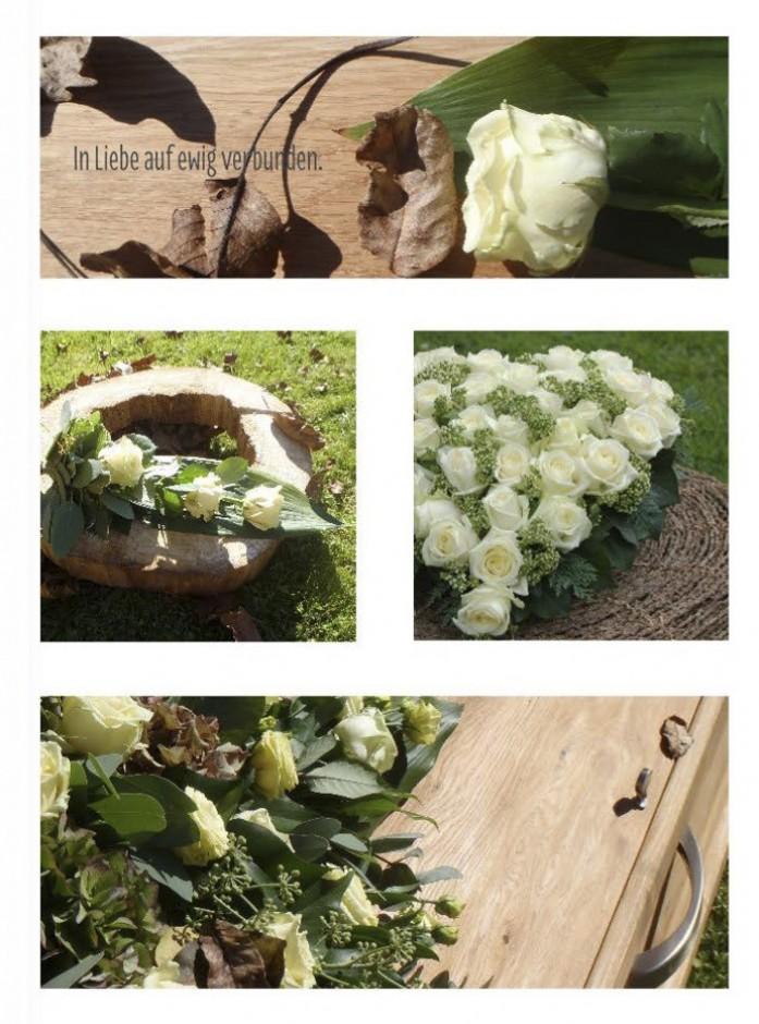 Blumenbuch PDF_Seite_20_1